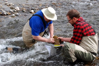 River Continuum Concepts, Inc. collecting samples in the field